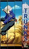 echange, troc Dragon Ball Z: Trunks 4 [VHS] [Import USA]