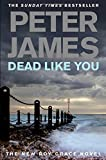 Peter James Dead Like You