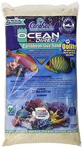 Carib Sea ACS01920 Ocean Direct Oolite Sand for Aquarium, 20-Pound, 2 Per Case