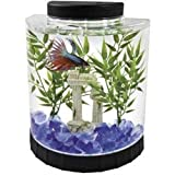 Tetra 29049 Half Moon Aquarium Kit, 1.1 Gallon