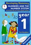 Developing Numeracy: Numbers And The...