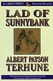 Lad of Sunnybank (Thorndike Classics)