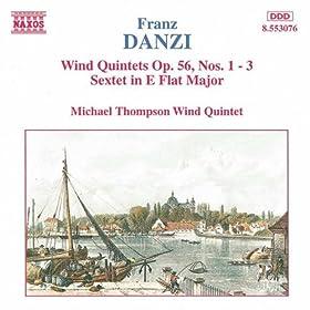Wind Quintet in F major, Op. 56, No. 3: I. Andante sostenuto - Allegro