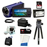 Sony HDR-CX220/L Full HD Handycam Camcorder(Blue) with Sony 16GB SD Memory Card + Sony Small Case + Wasabi Power Replacement Battery for NP-FV50 + 9