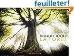 Broceliande, La Foret: Photographies...