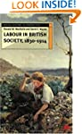 Labour in British Society, 1830-1914...