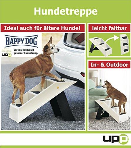 Artikelbild: Hundetreppe / Katzentreppe
