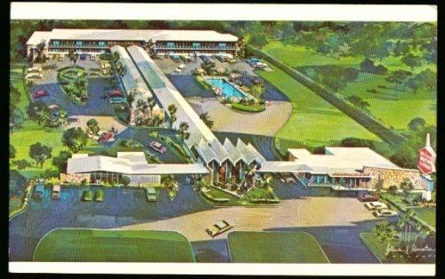 Mt Dora Motor Lodge Fl Postcard 1957