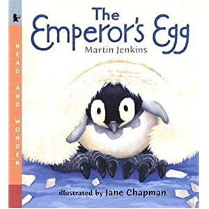 The Emperor's Egg Big Book: Read and Wonder Big Book