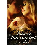 Divorce, Interrupted (The Lake Willowbee Series) ~ Jill James