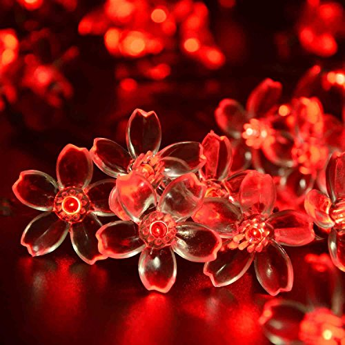 Red Decorative String Lights : lederTEK lederTEK Solar Fairy String Lights 21ft 50 LED Red Blossom Christmas Decorative Gardens ...