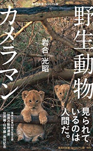 http://macaro-ni.jp/30635