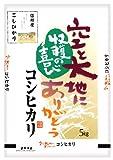 【新米】 信州産 玄米 こしひかり 10kg(5kg×2) 平成26年産