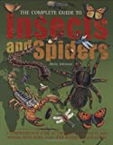Complete Guide To Insects And Spiders