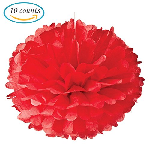 10pcs Red Tissue Hanging Paper Pom-poms, Hmxpls Flower Ball Wedding Party Outdoor Decoration Premium Tissue Paper Pom Pom Flowers Craft Kit (Crepe Pom Pom compare prices)