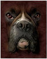 Boxer Dog Breed Fleece Throw Blanket