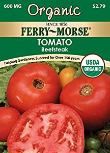 Celebrity - (F1) Tomato Seed | Johnny's Selected Seeds