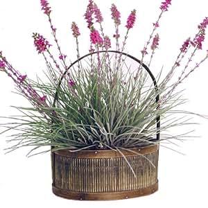 Forever Silk Lavender Fields