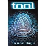 1 X Tool 10000 Days Music Poster Print