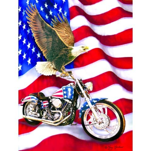 Cheap SunsOut Symbols of Freedom Patriot 500 Piece Jigsaw Puzzle (B003M6QNUU)