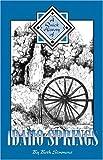 A Quick History of Idaho Springs
