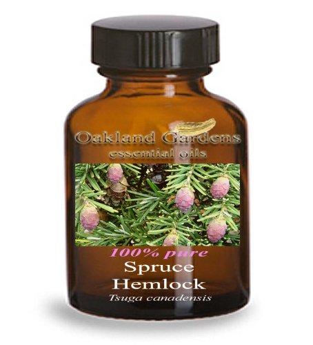 SPRUCE HEMLOCK Essential Oil (5 mL Euro Dropper) - 100% PURE Therapeutic Grade Essential Oil - Tsuga Canadensis - Essential Oil By Oakland Gardens