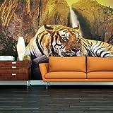 Vlies Tapete ! Top ! Fototapete ! Wandbilder XXL ! 450x270 cm - Tiere 10060903-32 ! Free glue for each wallpaper !