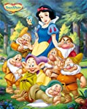 Disney Princess Snow White and Seven Dwarfs Regular Children's Cartoon Poster 40x50cm