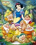 Disney Princess Snow White and Seven Dwarfs Regular Children's Cartoon Poster 40x50cm