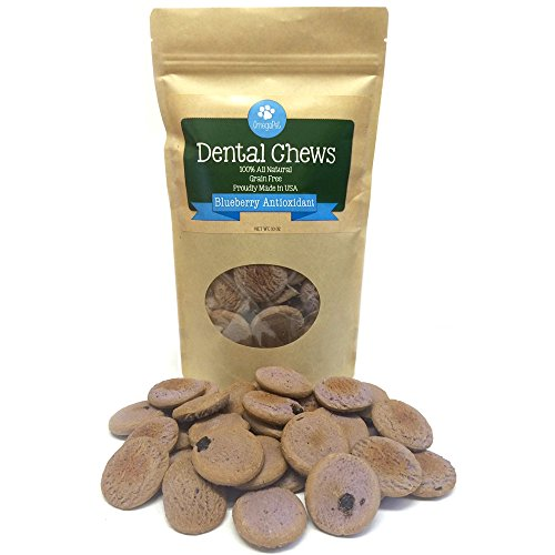 Grain Free Dog Treats (42 Oven-Baked Cookies) Healthy Human Grade Dog Biscuits - Best Puppy Training Snacks - Made in USA