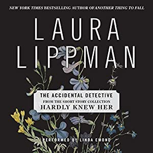 The Accidental Detective Audiobook