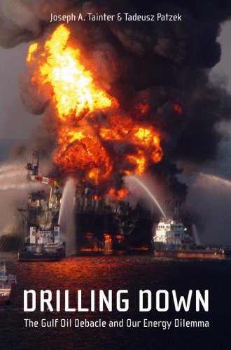 Drilling Down: The Gulf Oil Debacle and Our Energy Dilemma (Drilling Ships compare prices)