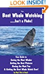 Best Whale Watching (Hey! This is Easy!)