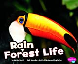 img - for Rain Forest Life (Pebble Plus: Habitats Around the World) book / textbook / text book