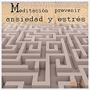 Meditacion Para Prevenir Ansiedad y Estres [Meditation to Prevent Stress and Anxiety] Speech