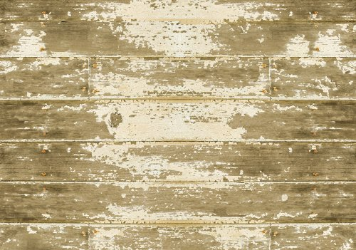 Bungalow Flooring FoFlor 46-by-66-Inch Area Rug, Barnboard Design