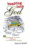 img - for Bumping into God: 35 Stories of Finding Grace in Unexpected Places book / textbook / text book
