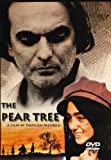 Pear Tree [DVD] [1998] [Region 1] [US Import] [NTSC]