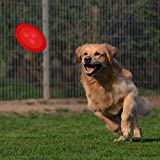 PetsNall Flying Disc Dog Toy with Flashing LED Lights - Silicone Large Red Flyer