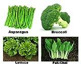 Easy Gardening Asparagus, Broccoli, Lettuce, Pak choi F1 Hybrid Seed Kit