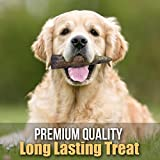 Bullysticks Organic Deer Antler (4-5 inch 1 pound)-Elk Antlers Dog Chews-Healthy Treats for Dogs-All Natural Gluten Free Dog Chew Toys-Safe, Hypoallergenic, Chemical Free-!
