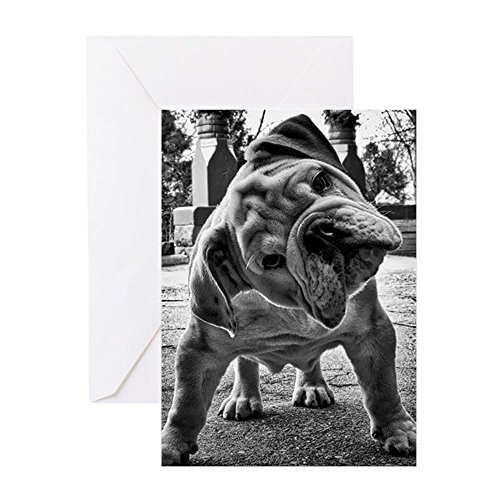 CafePress - Dudley English Bulldog Greeting Cards - Greeting Card, Note Card with Blank Inside, Birthday Card or Special Occasion Matte (English Bulldog Birthday Card compare prices)