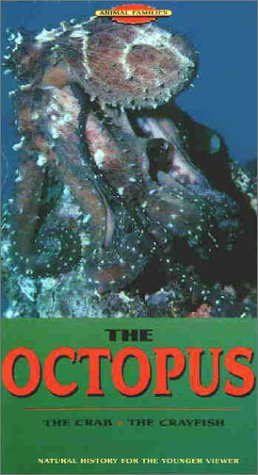 Animal Families: The Octopus- The Crab - The Crayfish [VHS]