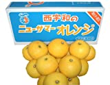 【愛媛のまじめなみかんです】ニュ−サマーオレンジ(JAにしうわ)¥4,000円 ランキングお取り寄せ