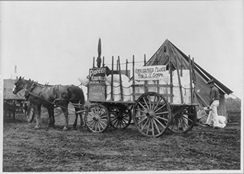 1911 Photo Fort Sam Houston, Tex., 1911-1912: horse-drawn commissary wagon of unbleached flour