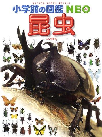 昆虫 (小学館の図鑑NEO)