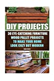 img - for DIY Projects: 30 Eye-Catching Furniture Wood Pallet Projects To Make Your Home Look Cozy But Modern: (Household Hacks, DIY Projects, DIY Crafts,Wood ... things, recycled crafts, recycle reuse renew) book / textbook / text book