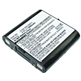 Exell Remote Control Battery 4.8V
