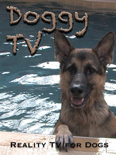 Doggy TV (Reality TV for Dogs)