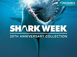 Shark Week: 20th Anniversary Collection